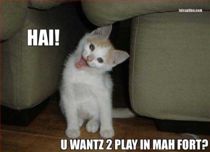 funny-pictures-HAI-YOU-WANTZ-2-PLAY-IN-MAH-FORT