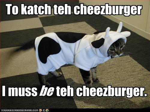 funny-pictures-cat-dressed-as-cow