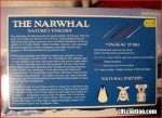 the-avenging-narwhale-wtf-stupidest-toy-ever-2