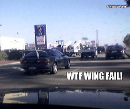 funny-pictures-wtf-wing-fail
