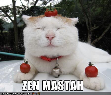funny-cat-pictures-zen-masta-fat-cat
