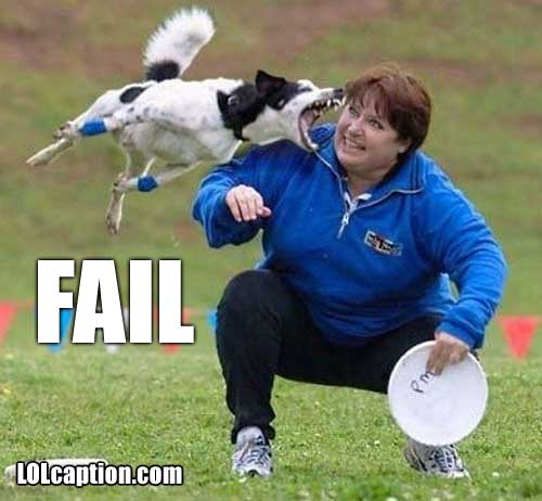 funny fail pics dog frisbee fail frisbee lolcaption com funny pictures and funny youtube videos