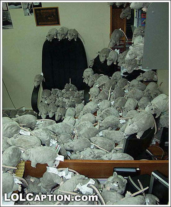 epic-office-prank-fake-rats-mice-toys