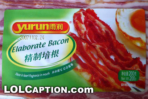 lolcaption-funny-pictures-elaborate-bacon