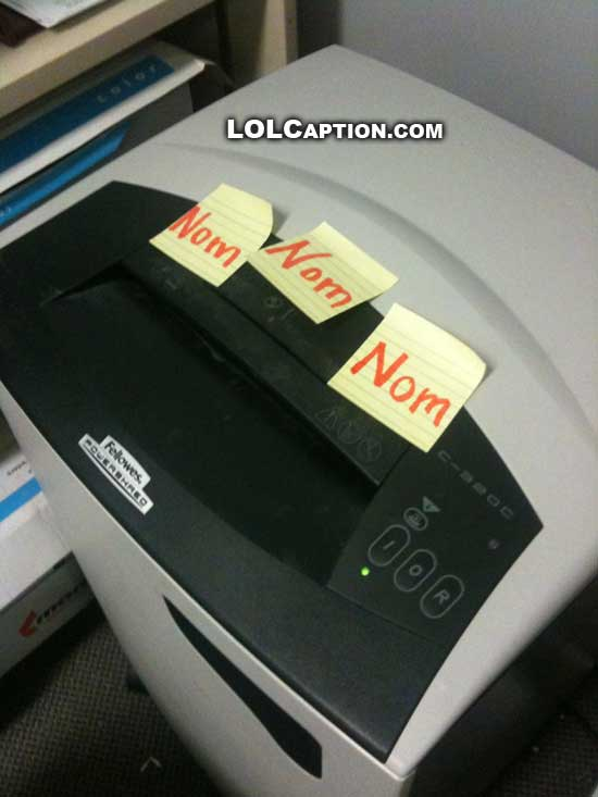 lolcaption-funny-pictures-shredder-nom-nom-nom