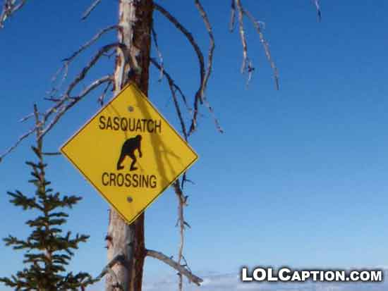 lolcaption-funny-signs-sasquatch-crossing-strange-sign
