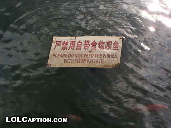please-do-not-feed-the-fishes-with-your-private-lol-wtf-lolcaption-wanhuaxi-park