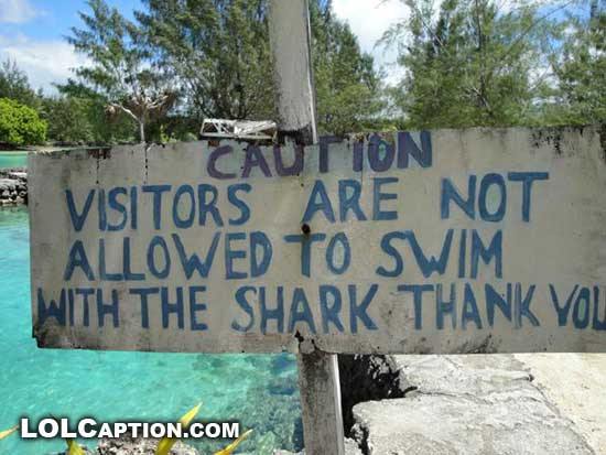 lolcaption-funny-not-allowed-to-swim-with-shark-sign