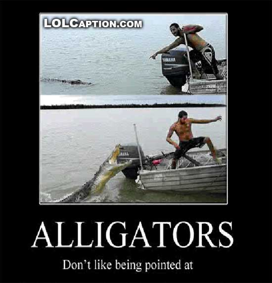 funny-demotivational-posters-alligators-dont-like-being-pointed-at-lolcaption