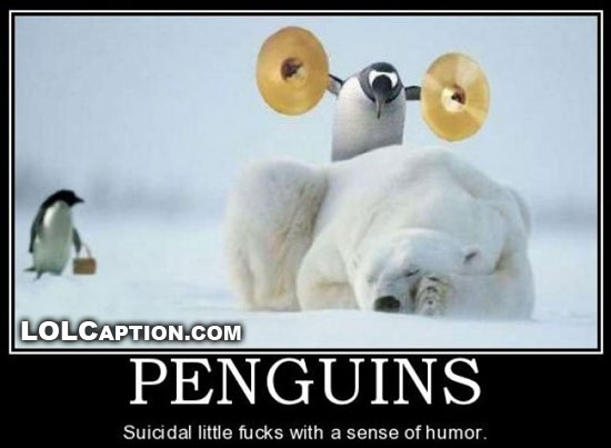 penguins-how-do-they-work-suicidal-lolcaption-funny-demotivationals