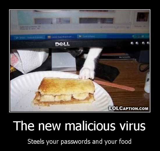 funny-demotivational-posters-lolcaption-new-malicious-virus-steals-food