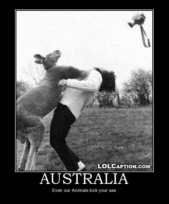 lolcaption-funny-demotivational-postes-australia-where-even-animals-kick-your-ass