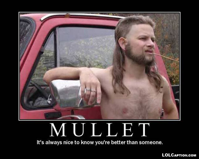funny-demotivational-posters-lolcaption-mullet-better-than-someone-humor