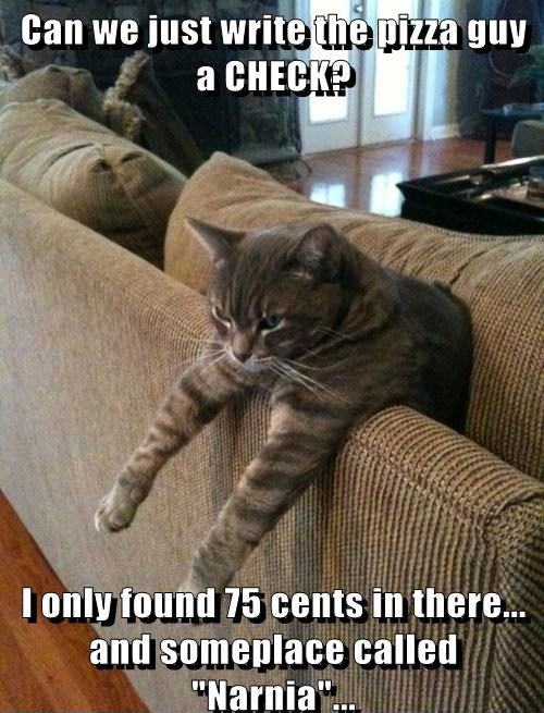 Funny Cat Pictures With Captions Photos Lolcats Can Just