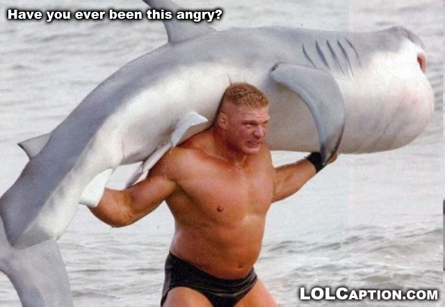 funny-pictures-with-captions-lolcaptions-shark-wrestling-have-you-ever-been-this-angry-funny-pictures