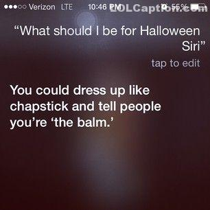 lolcaption-funny-pictures-with-captions-siri-funny-responses