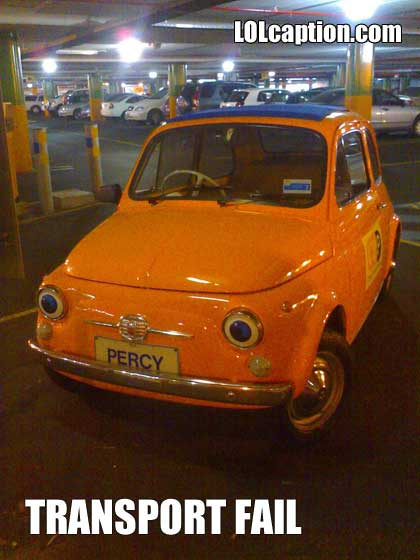 funny-pictures-tiny-car-transport-fail