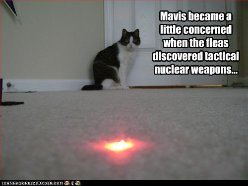 fleas discover tactical nukes