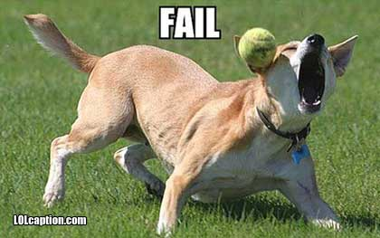 dog-epic-fail-pictures-ball-catch-fail