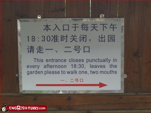 really bad translation funny picture leaves the garden please walk to one