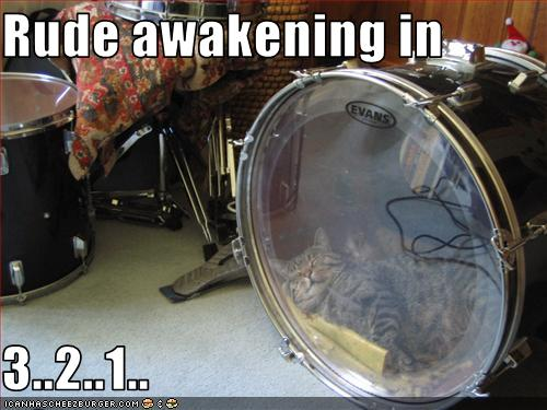 funny lolcat picture rude awakening
