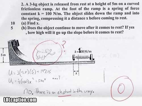 funny-fail-pics-how-to-fail-an-exam-elephant-in-the-way