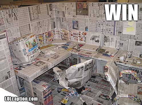 win-pics-office-covered-in-newspaper