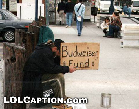 funny pictures budweiser fund
