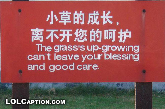 lolcaption-funny-sign-grass-up-growning
