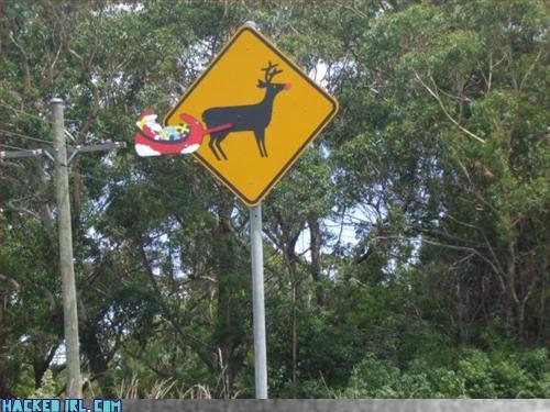reindeer located hacked irl