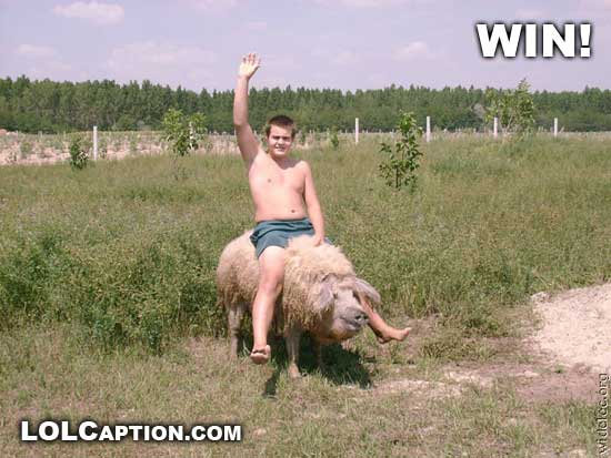 funny-win-pictures-riding-a-pig-lolcaption