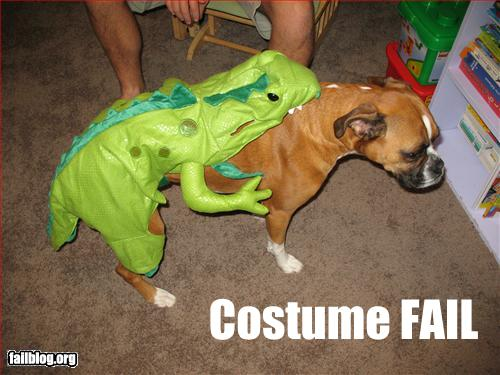 funny-picture-costume-fail-loldog