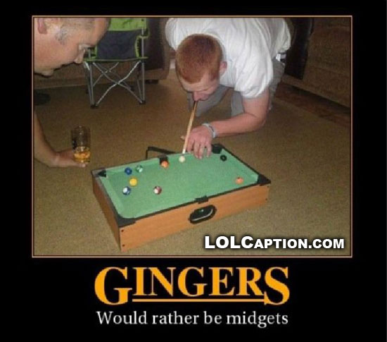 gingers-would-rather-be-midgets-demotivational-poster