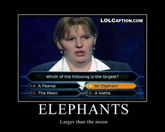 funny-demotivational-pictures-elephants-larger-than-the-moon