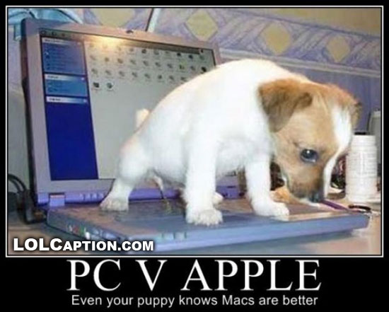 PC-vs-Apple-even-your-dog-knows-which-is-best-lolcaption-funny-demotivational