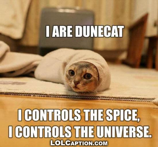 lolcaption-dune-cat-controls-lolcats