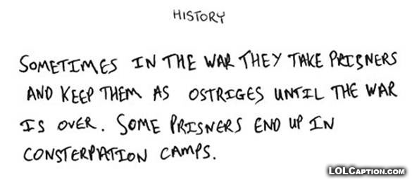 history-ostriges-war-consterpation-camps-why-teachers-drink-funny-exam-answers-lolcaption