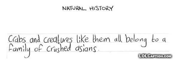 science-crushed-asians-crabs-why-teachers-drink-funny-exam-answers-lolcaption