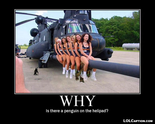 why-penguin-on-helipad-demotivational-poster-lolcaption