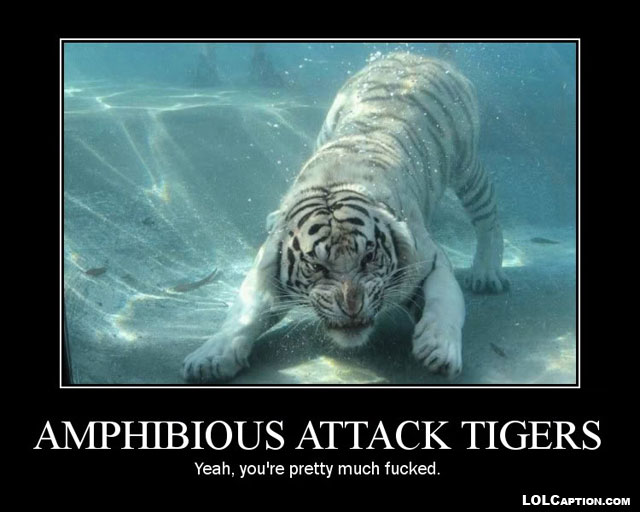amphibious-attack-tiger-funny-demotivational-posters-lolcaption