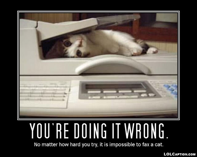 funny-demotivational-posters-lolcaption-fax-cat--youre-doing-it-wrong