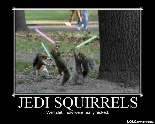 jedi-squirrels-funny-demotivational-posters-lolcaption