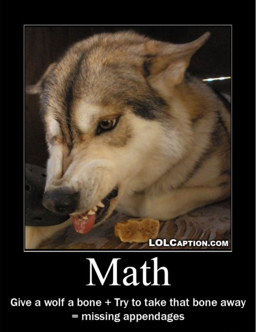 funny-demotivational-poster-lolcaption-wolf-math
