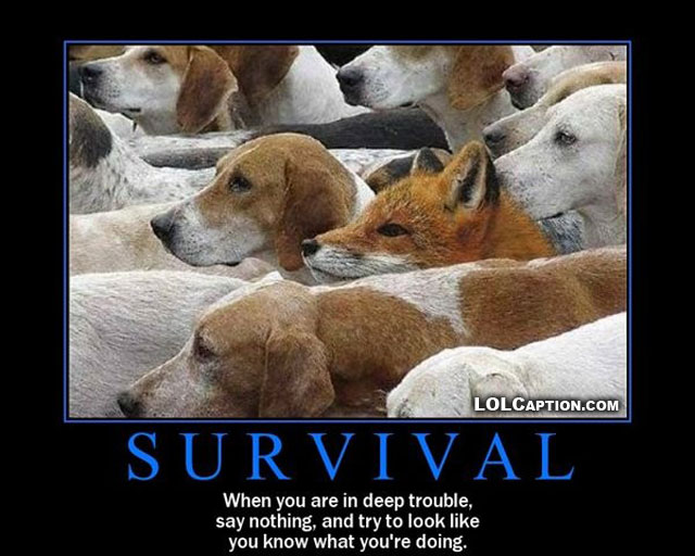 funny-demotivational-posters-fox-hound-survival-lolcaption