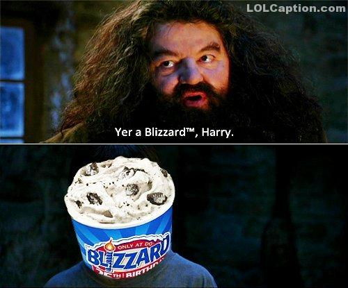 lolcaption-funny-harrypotter-blizzard-dairyqueen