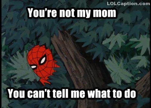 lolcaption-spiderman-funny-tree-superhero